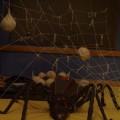 Horror of the horror room - Shelobina